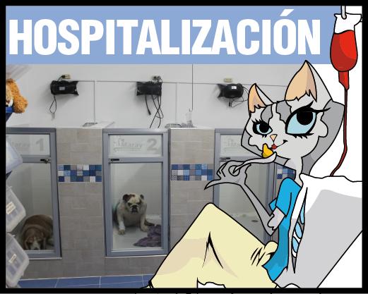 Hospitalización Maray
